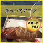 釣果レポ vol.1 「鯛ラバ」