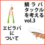 鯛ラバタックルについて vol.3 [エビラバについて]
