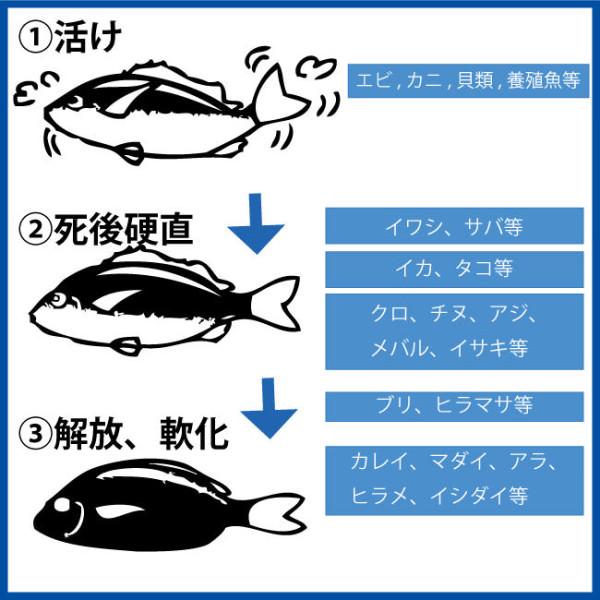 魚種別の食べごろ
