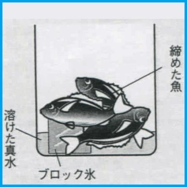 魚の冷やし方(段階1)
