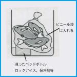 魚の持ち帰り方 「Level2  ビニール袋で」