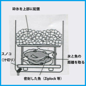 魚の冷やし方(段階4)