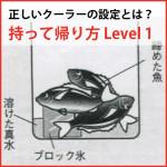 魚の持ち帰り方 「Level1  取りあえず in クーラー」