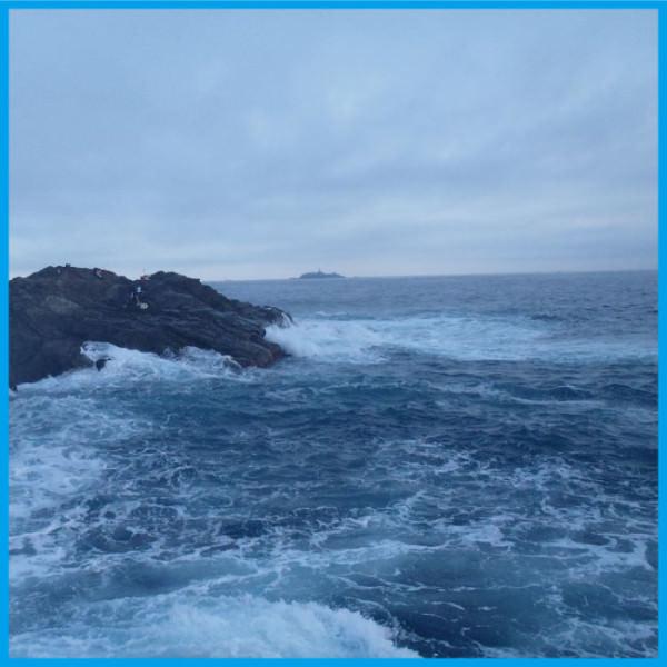 サラシの海